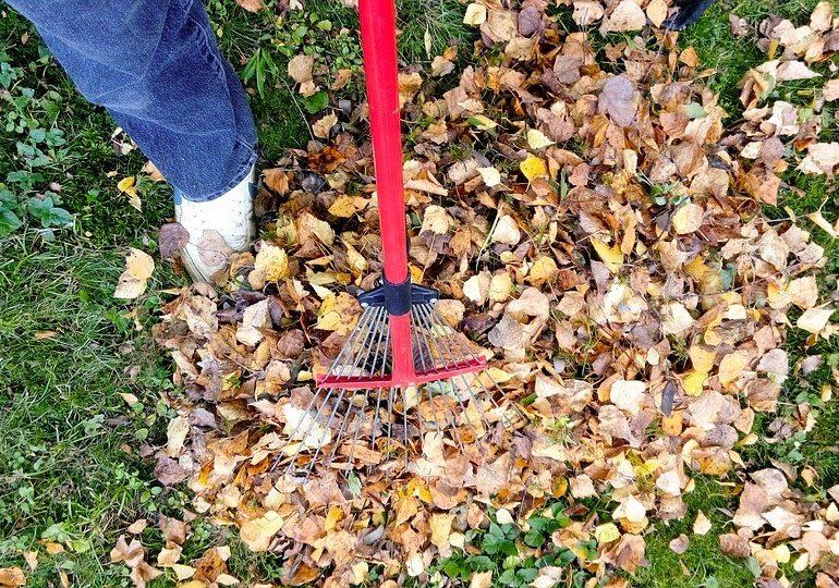 Fall, fall cleaning, junk removal, junk hauling, winterization, winter ready, minneapolis, st.paul, twin cities, declutter, decluttering, fall organization tips, junk360, organization, cleaning tips